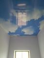 Натяжные потолки с фотопечатью в коридоре